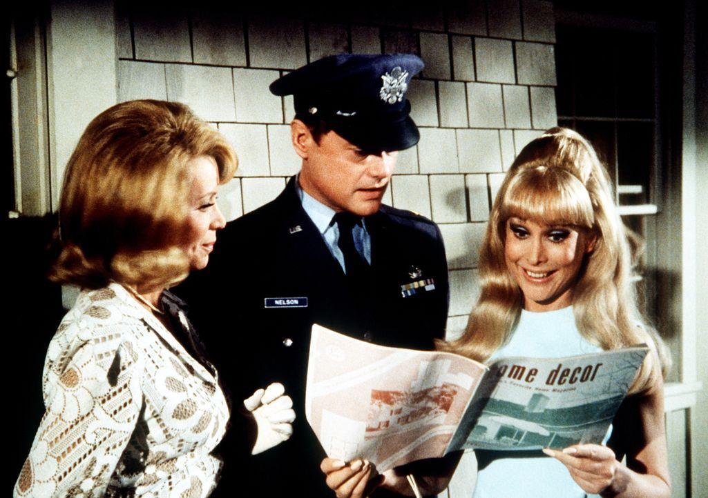 Amanda Bellows (Emmaline Henry, l.) bemüht sich um ein besseres Hochzeitsgeschenk für Tony (Larry Hagman, M.) und Jeannie (Barbara Eden, r.) als die... - Bildquelle: Columbia Pictures
