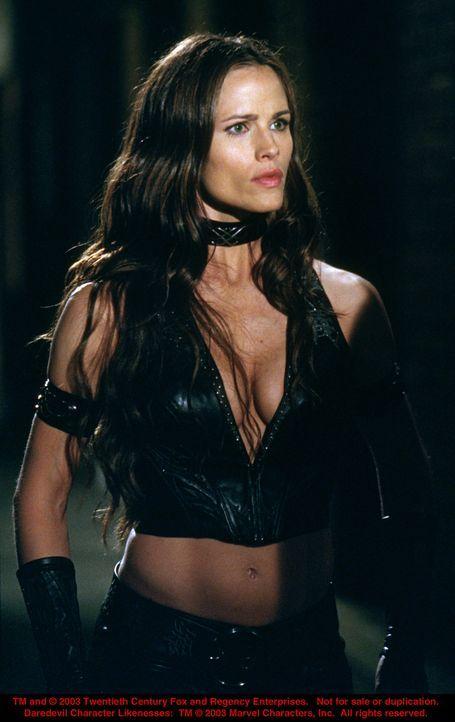 Kampfkunst-Expertin Elektra Natchios (Jennifer Garner) liebt einen Mann, dem sie auch immer wieder ans Leder will ... - Bildquelle: 20th Century Fox