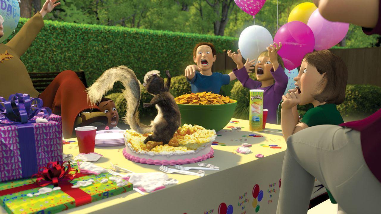 Die Tiere scheinen auf einmal völlig durchzudrehen: Stinktierdame Stella (M.) platzt mitten in einen Kindergeburtstag und sorgt für große Aufregu... - Bildquelle: United International Pictures