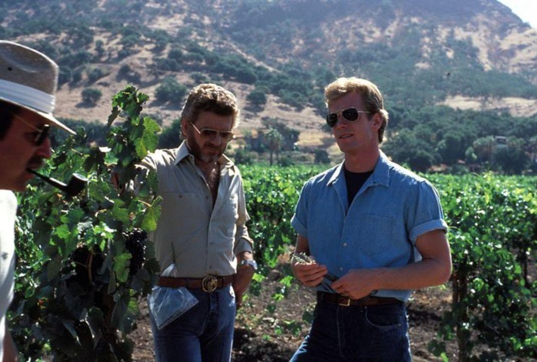 (4. Staffel) - Coles (William R. Moses, r.) Vater Chase (Robert Foxworth, l.) wird beschuldigt, den Flugzeugabsturz absichtlich herbeigeführt zu hab... - Bildquelle: 1984   Warner Brothers