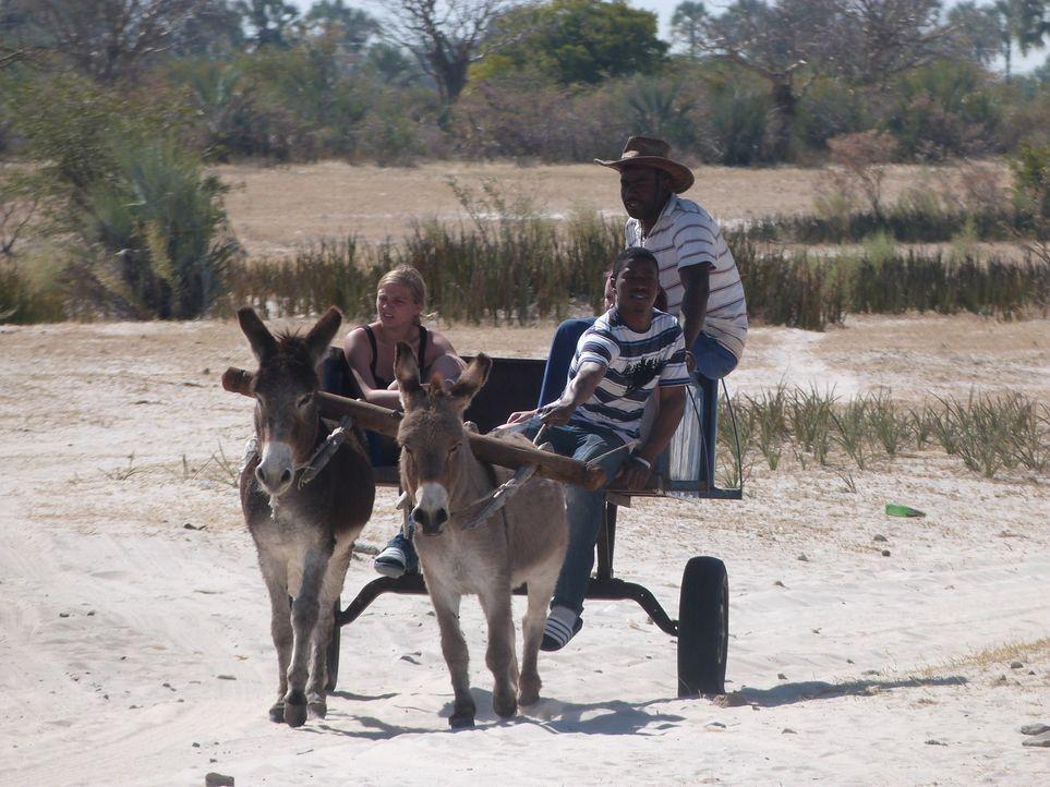 Jaqueline (l.) wird von ihrer Familia nach Namibia geschickt, um dort zu lernen, was es bedeutet, Verantwortung zu übernehmen ... - Bildquelle: SAT.1