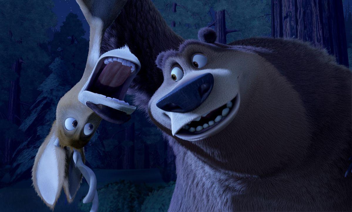 Als eines Tages der freche Hirsch Elliot den Weg von Boog kreuzt, ist dies der Anfang einer abenteuerlichen Reise ... - Bildquelle: Sony Pictures Television International. All Rights Reserved