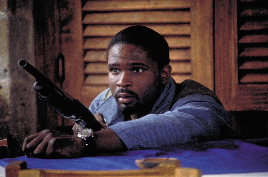 Nimmt den schier aussichtslosen Kampf gegen Una und ihre blutrünstigen Horden auf: Ray Collins (Darius McCrary) ... - Bildquelle: 2004 Sony Pictures Television International. All Rights Reserved.