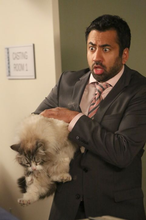 Alys Freund Tripp (Kal Penn) erlebt mit Winston und dessen Katze eine Überraschung ... - Bildquelle: Patrick McElhenney 2016 Fox and its related entities.  All rights reserved.