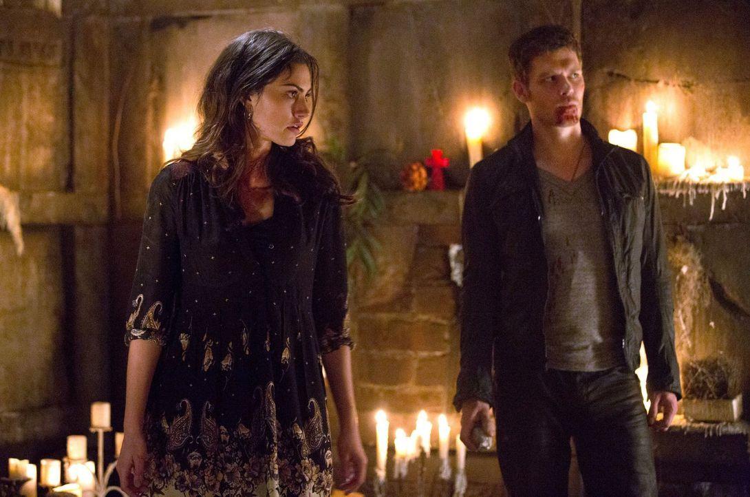 Die Erleichterung, Hayley (Phoebe Tonkin, l.) wiederzusehen, wird bei Klaus (Joseph Morgan, r.) und Elijah durch eine erschreckende Erkenntnis getrü... - Bildquelle: Warner Bros. Television