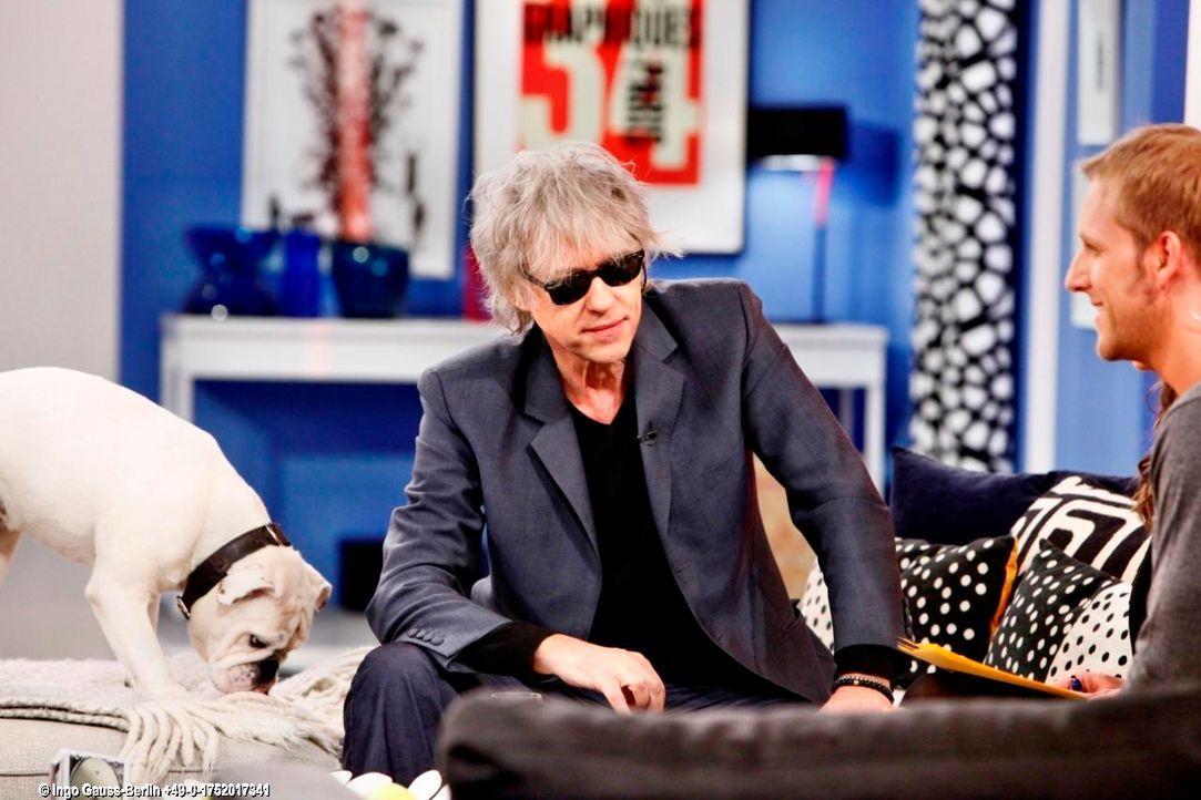 fruehstuecksfernsehen-studiohund-lotte-in-action-im-studio-110 - Bildquelle: Ingo Gauss