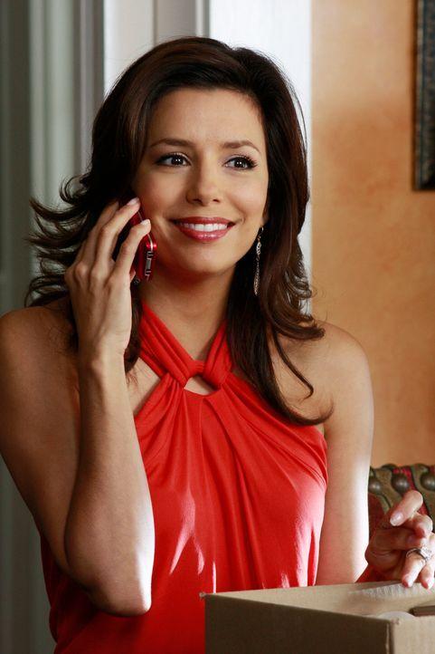 Ist über ihren Fund hoch erfreut: Gabrielle (Eva Longoria) ... - Bildquelle: ABC Studios