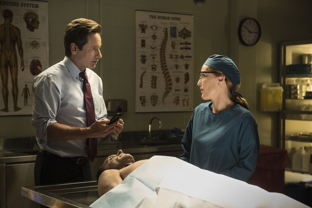 Mulder (David Duchovny, l.) und Scully (Gillian Anderson, r.) untersuchen einen Fall, bei dem sie herausfinden müssen, ob eine Tierattacke, ein Seri... - Bildquelle: 2016 Fox and its related entities.  All rights reserved.