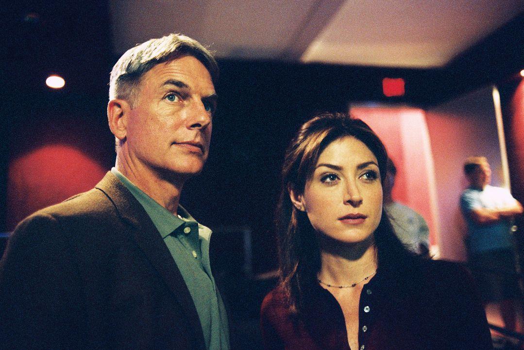 Kate (Sasha Alexander, r.) und Gibbs (Mark Harmon, l.) untersuchen den Tod eines Navy Commanders, der während eines Drogengeschäfts getötet wurde ..... - Bildquelle: CBS Television