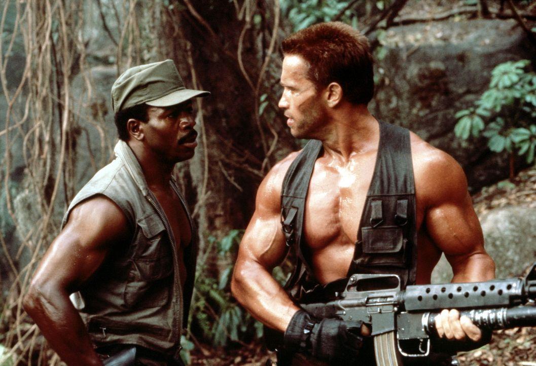 Dillon (Carl Weathers, l.) und Dutch (Arnold Schwarzenegger, r.) sind auf der Suche nach dem unsichtbaren Feind. - Bildquelle: 20th Century Fox Film Corporation