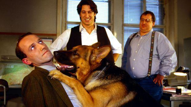 Rex kann es nicht lassen. Er geht auf Tuchfühlung mit Ernst Stockinger (Karl...