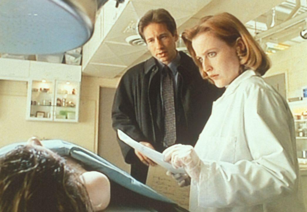 Mulder (David Duchovny, M.) und Scully (Gillian Anderson, r.) staunen nicht schlecht, dass das jugendlich erscheinende Opfer einer heimtückischen Kr... - Bildquelle: TM +   2000 Twentieth Century Fox Film Corporation. All Rights Reserved.