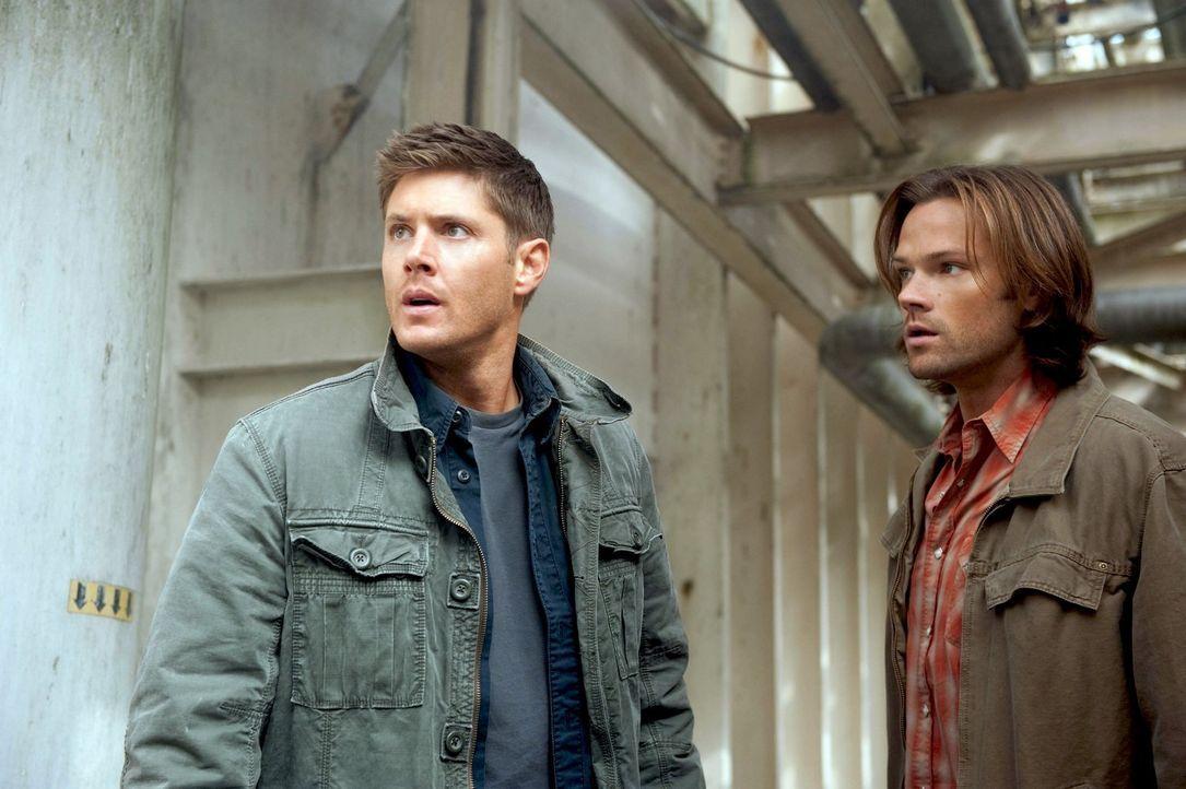 Noch ahnen Sam (Jared Padalecki, r.) und Dean (Jensen Ackles, l.) nicht, welche Auswirkungen Cas Rückkehr noch haben wird ... - Bildquelle: Warner Bros. Television