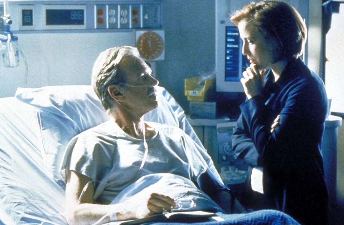 Scully (Gillian Anderson, r.) trifft nach vielen Jahren ihren ehemaligen Lehrer und Geliebten Dr. Waterston (Nicolas Surovy, l.) wieder, der schwer... - Bildquelle: TM +   2000 Twentieth Century Fox Film Corporation. All Rights Reserved.