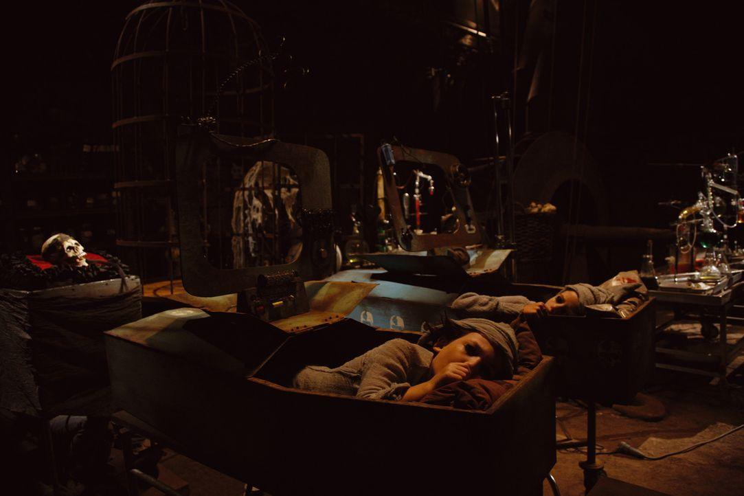 Die unerfahrenden Nachwuchsvampire Jeckyl (Sandro Iannotta, r.) und Hyde (Bruno Schubert, l.) fallen in einen tiefen, tiefen Schlaf, während Klette... - Bildquelle: Buena Vista International