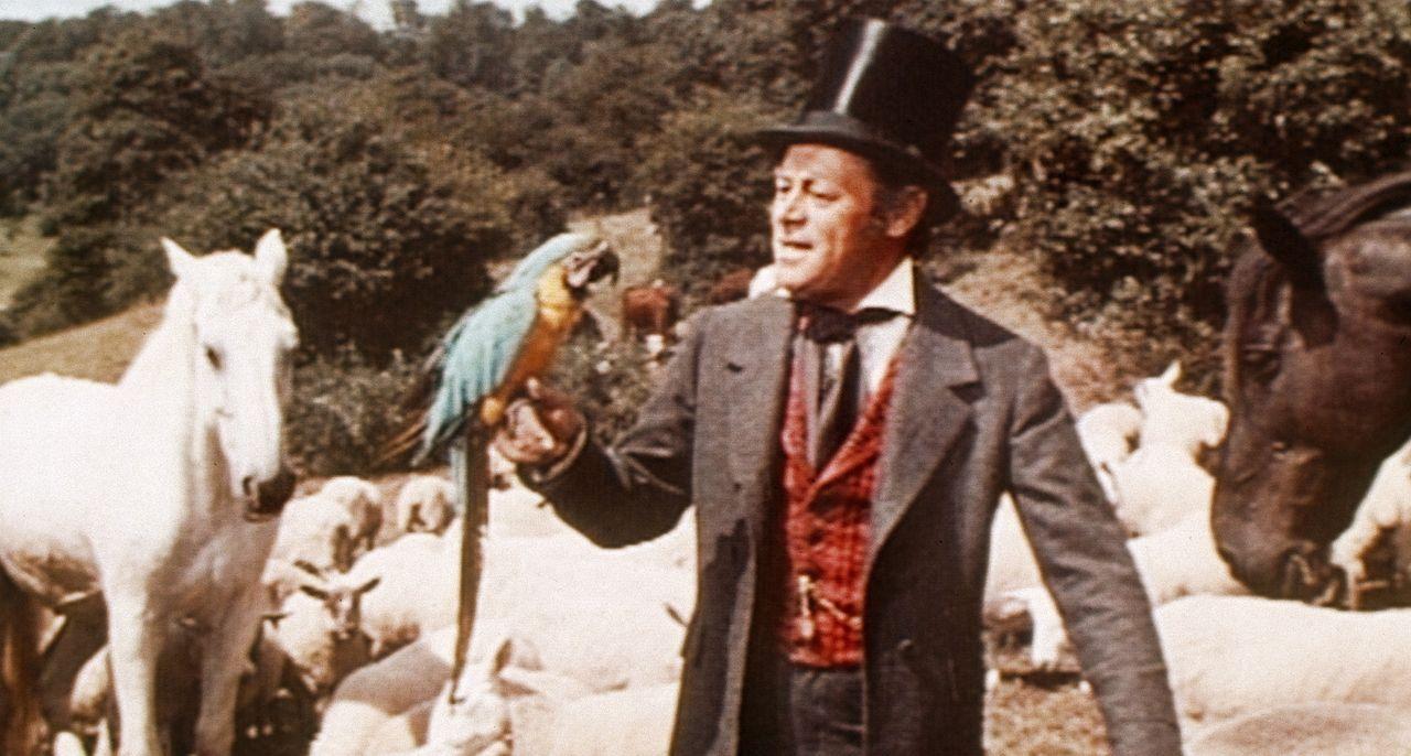Doctor Dolittles pfiffiger Papagei Polynesia hat seinem Herrchen (Rex Harrison) die verschiedenen Dialekte der Tiere beigebracht. Jetzt kann sich der Doc sogar mit Pferden unterhalten.