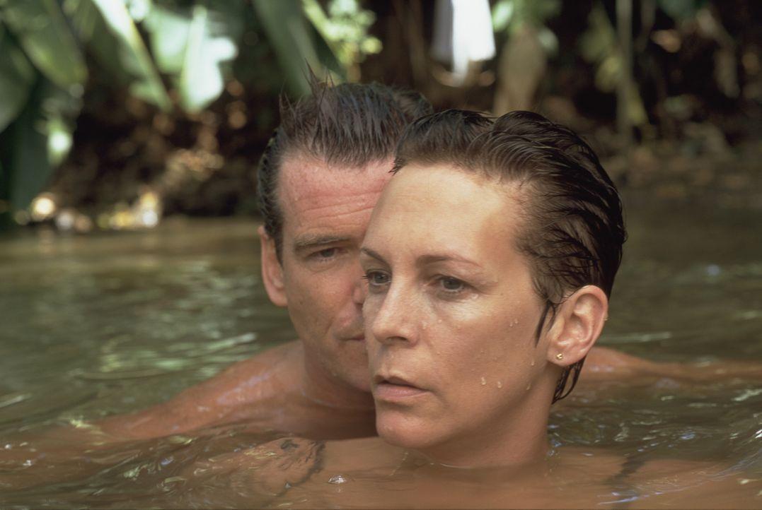 Nach einiger Zeit möchte Louisa (Jamie Lee Curtis, vorne) den geheimnisvollen Engländer (Pierce Brosnan, hinten) kennen lernen, mit dem ihr Mann so viel Zeit verbringt. Ein gemeinsamer Badeausflug lädt dazu ein ...