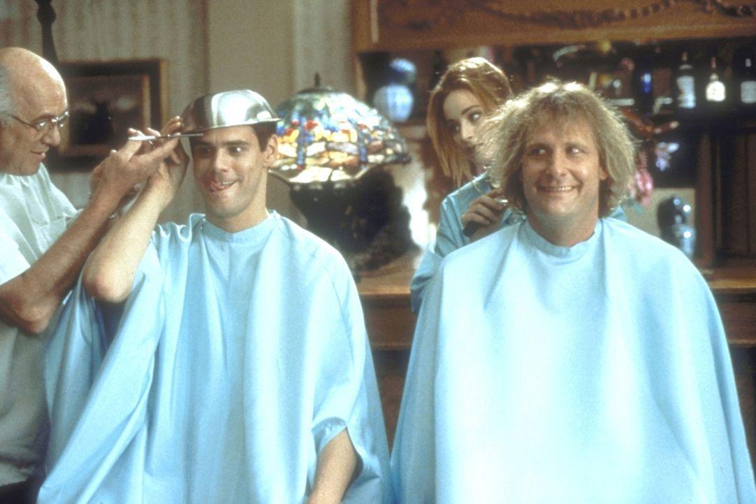 Sogar den Frisör treiben Lloyd (Jim Carrey, l.) und Harry (Jeff Daniels, r.) mit ihren skurrilen Wünschen zum Wahnsinn ... - Bildquelle: New Line Cinema
