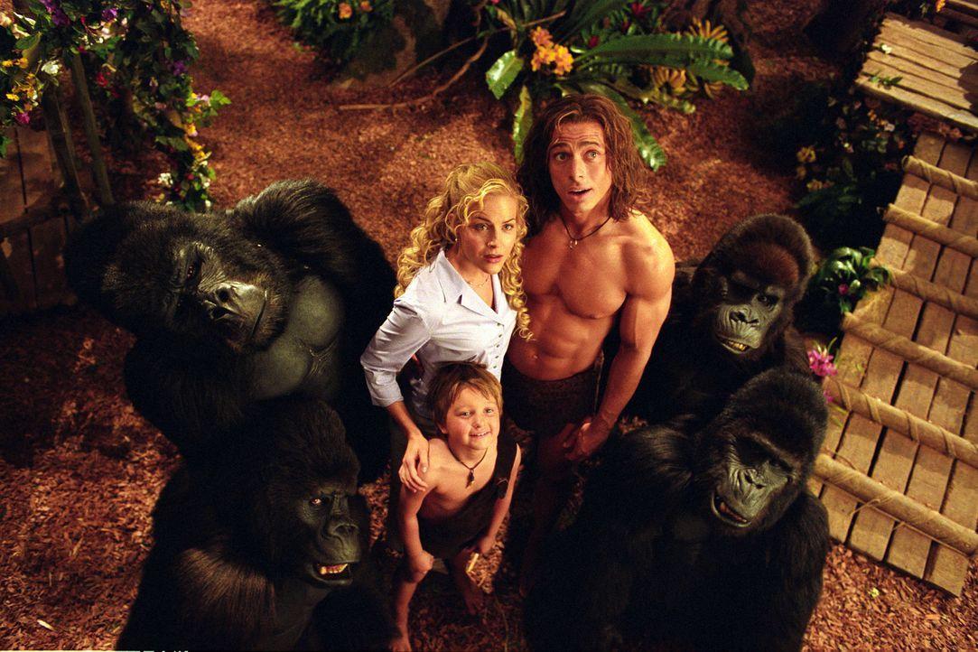 Glückliche Dschungel-Familie: George (Christopher Showerman, r.), Ursula (Julie Benz, l.) und George jr. (Angus T. Jones, M.) - Bildquelle: Walt Disney Pictures