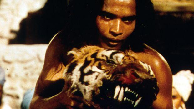 Als kleiner Junge flieht Nathoo  in den Dschungel, wo er von den Wölfen aufge...