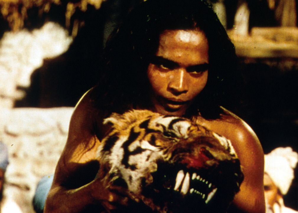 Als kleiner Junge flieht Nathoo  in den Dschungel, wo er von den Wölfen aufgezogen wird und von ihnen den Namen Mowgli (Sabu) erhält. Doch er hat... - Bildquelle: United Artists