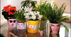taff Trend 27.4. Blumentopf