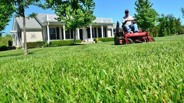 Rasenmäher-Garten-Gras-pixabay