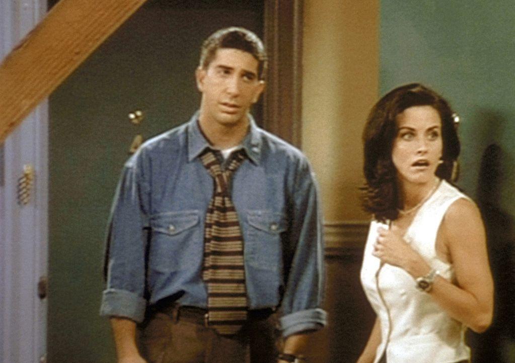 Ross (David Schwimmer, l.) teilt seiner Schwester Monica (Courteney Cox, r.) mit, dass seine Ex-Frau, die mit ihrer Geliebten durchgebrannt ist, ein... - Bildquelle: TM+  2000 WARNER BROS.