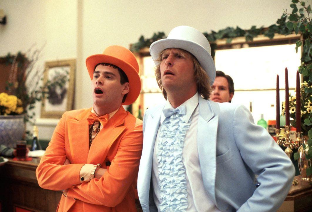 Chaos auf niedrigem Niveau: Llyod (Jim Carrey, l.) und Harry (Jeff Daniels, r.) fühlen sich jedoch pudelwohl ... - Bildquelle: Warner Bros.