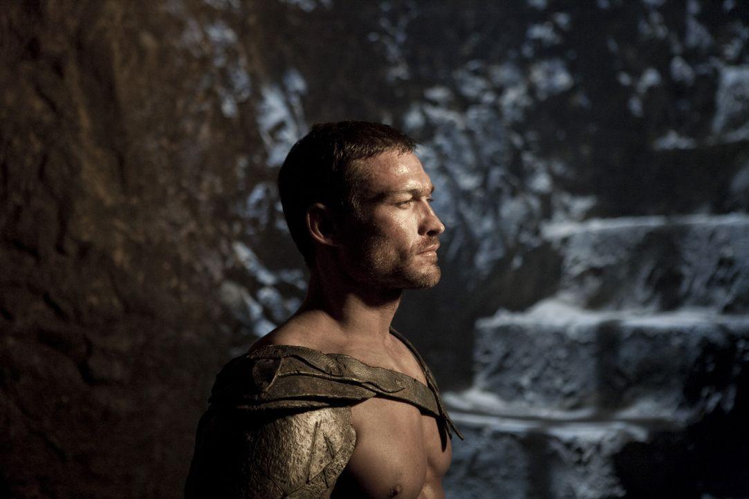Setzt alles daran, um gegen Crixus antreten zu dürfen: Spartacus (Andy Whitfield) ... - Bildquelle: 2010 Starz Entertainment, LLC
