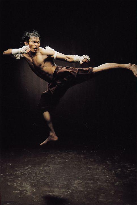 Mit der Hilfe von George hofft der in der überlieferten Kampfkunst Muay Thai ausgebildete Waisenjunge Ting (Tony Jaa), dem Dieb die gestohlene Buddh... - Bildquelle: e-m-s new media AG