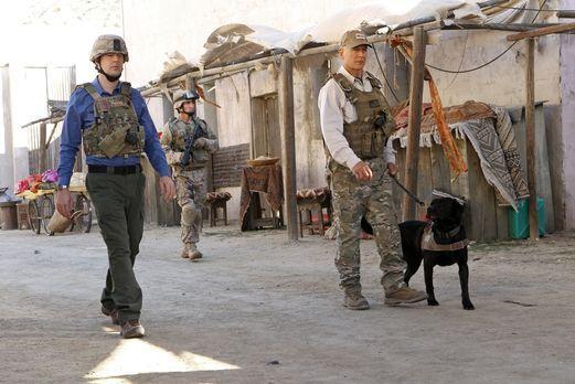 Navy CIS - In Afghanistan wird ein Hundeführer der Marines, Ted LaMere, aus d...