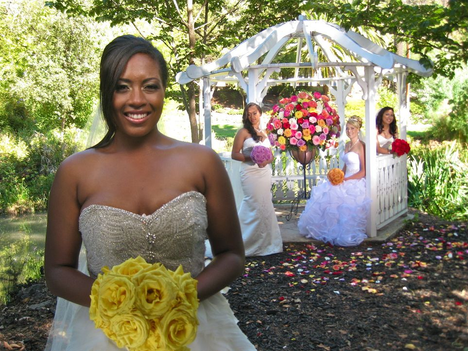 Sehen den vier Hochzeiten erwartungsvoll entgegen: Kale (l.), Jennifer (2.v.l.), Christa (2.v.r.) und Araceli (r.) ... - Bildquelle: Richard Vagg DCL