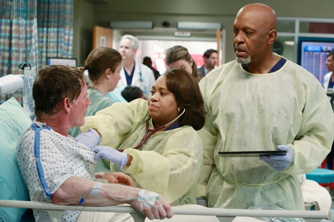 Weil ein Gastanker explodiert ist und dabei viele Menschen verletzt wurden, haben alle die Hände voll zu tun. Auch Miranda (Chandra Wilson, M.) kümm... - Bildquelle: ABC Studios