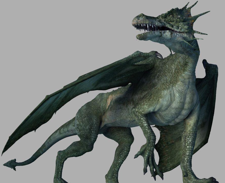 Überall auf der Welt sind Drachenlegenden bekannt. Der Drache wird als Tier von ungeheurer Größe, mit furchtbarem Blick, oft mehrköpfig und mit...