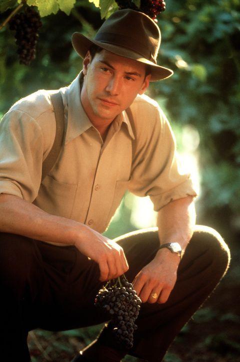 Von der Kakaobohne zur Weintraube: Schokoladenvertreter Paul Sutton (Keanu Reeves) verliebt sich ausgerechnet in die Tochter eines Winzers ... - Bildquelle: 20th Century Fox