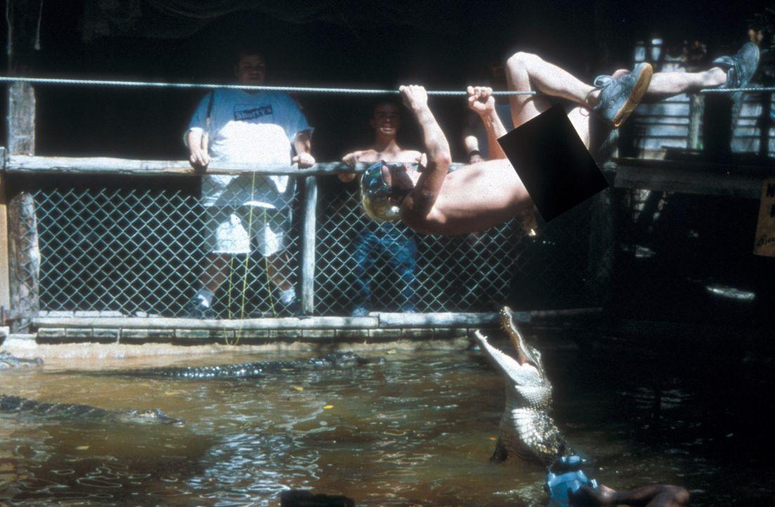 """Steve-O, hängend, tobt sich mal wieder so richtig aus .... (im Hintergrund Preston Lacy, l. und Jason """"Wee-Man"""" Acuna, r.) - Bildquelle: Paramount Pictures"""