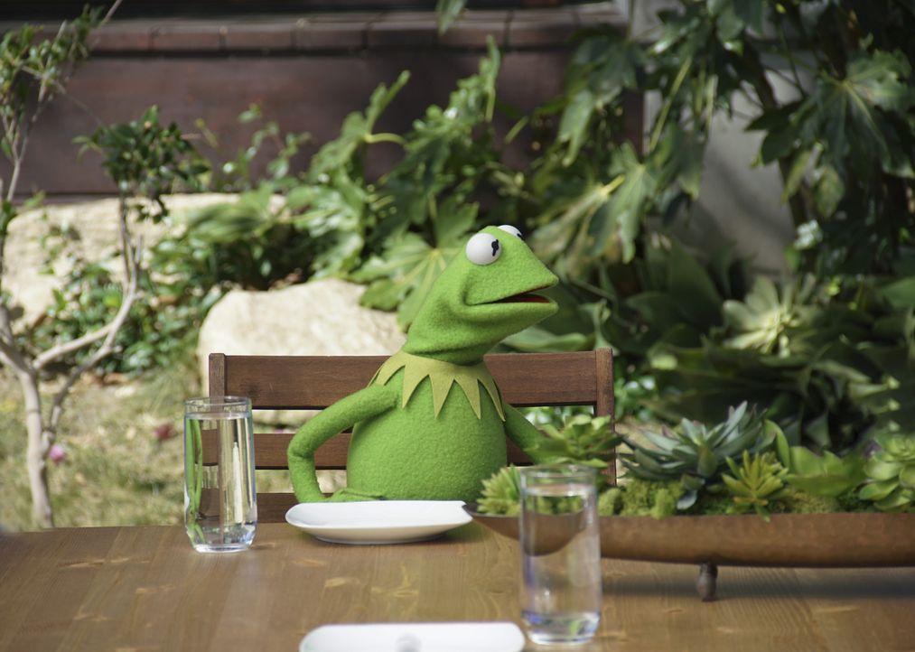 Auf Anraten von Miss Piggy und Denise gönnt sich Kermit eine Auszeit in einer Wellnesseinrichtung. Doch die verläuft anders als geplant ... - Bildquelle: Andrea McCallin ABC Studios