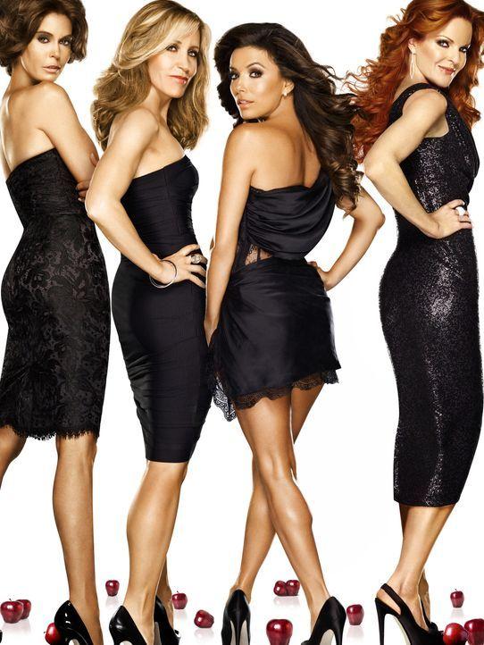 (8. Staffel) - Unterschätze nie eine Hausfrau: Lynette (Felicity Huffman, 2.v.l.), Bree (Marcia Cross, r.), Gabrielle (Eva Longoria, 2.v.r.) und Sus... - Bildquelle: ABC Studios