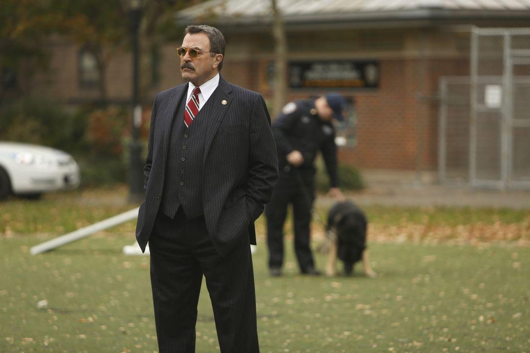 Als Frank (Tom Selleck) Beschwerden über einen Polizeihund zu Ohren kommen, der ein Kind angegriffen hat, nimmt er sich der Sache an ... - Bildquelle: 2013 CBS Broadcasting Inc. All Rights Reserved.