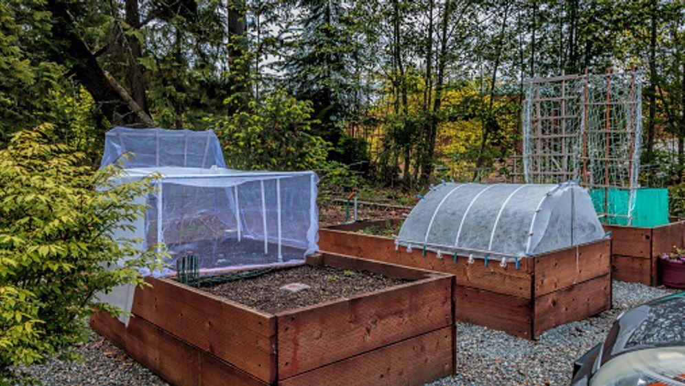 Hochbeet selber bauen  - Bildquelle: iStock / Getty Images Plus