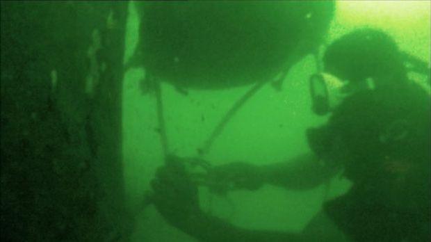 Der Unterwasserholzfäller