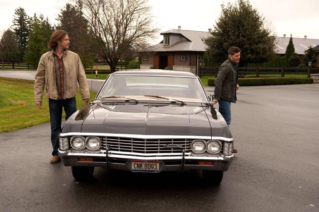 Drei Aufgaben, von Gott gestellt, müssen erfüllt werden. Sam (Jared Padalecki, l.) und Dean (Jensen Ackles, r.) streiten sich darüber, wer die erste... - Bildquelle: Warner Bros. Television