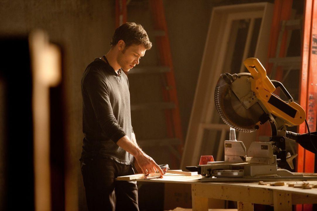 Lässt sich Klaus (Joseph Morgan) tatsächlich von Stefan in die Enge treiben? - Bildquelle: Warner Brothers