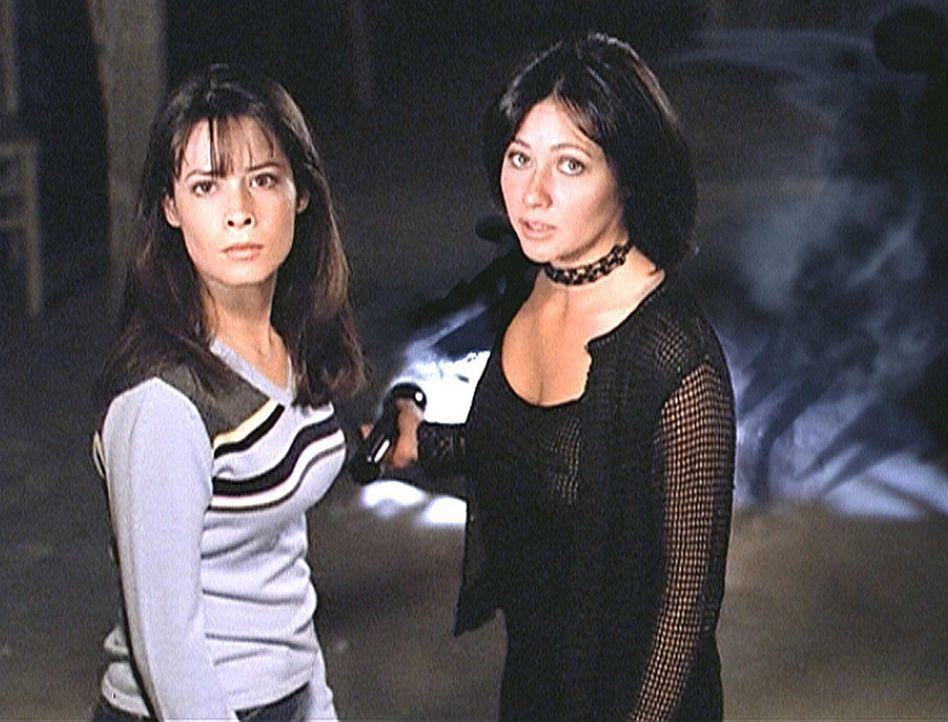 Piper (Holly Marie Combs, l.) und Prue (Shannen Doherty, r.) können sich nicht erklären, was mit ihrer Schwester Phoebe los ist ... - Bildquelle: Paramount Pictures