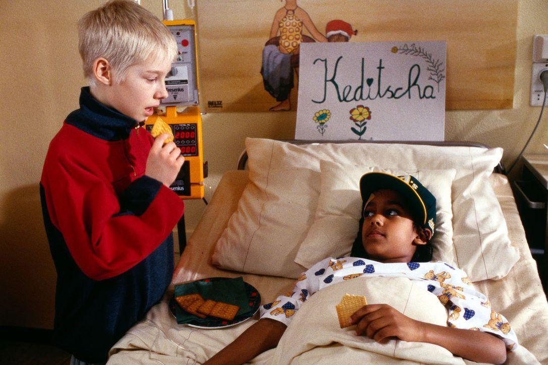 Der asthmakranke Jens (Stefan Weiser, l.) schafft es als einziger, sich mit der dunkelhäutigen Khedidja (Senait Nicola, r.) anzufreunden. - Bildquelle: Bernd Spauke Sat.1