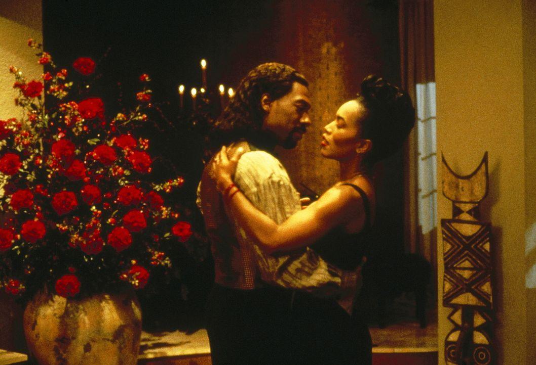 Tag für Tag buhlt Maximillian (Eddie Murphy, l.) um die Gunst seiner Angebeteten (Angela Bassett, r.). Doch Rita will ihn einfach nicht erhören ... - Bildquelle: Paramount Pictures
