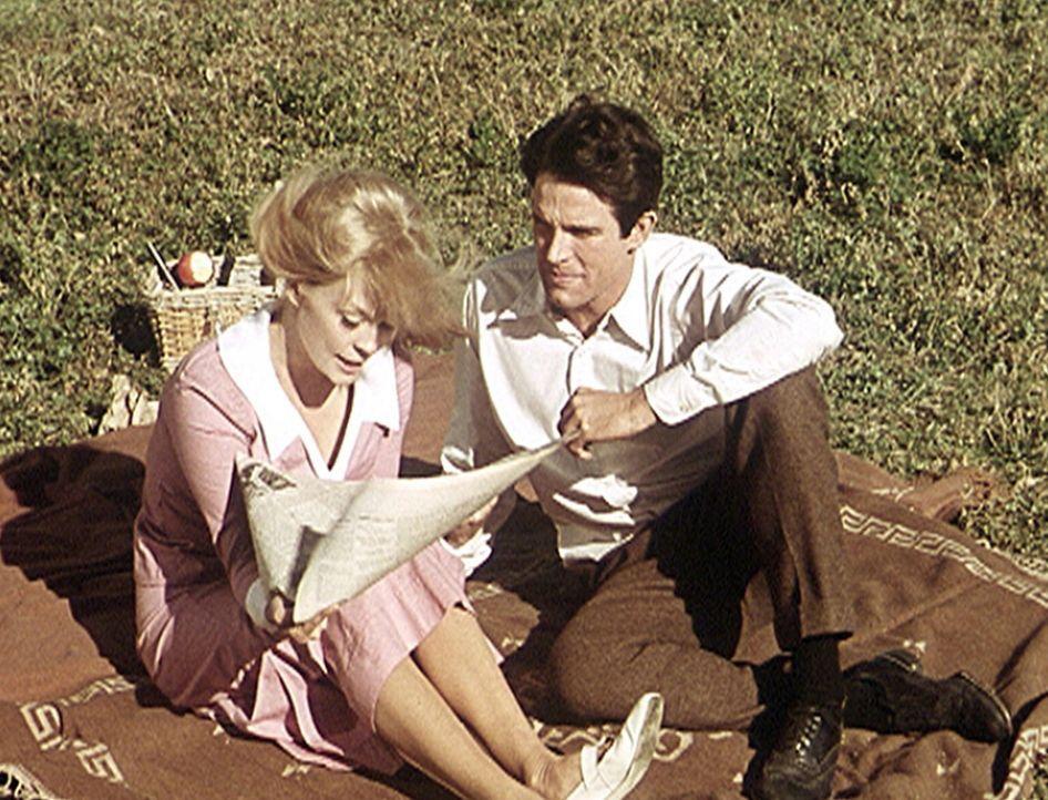 Bei einem gemütlichen Picknick lesen Bonnie (Faye Dunaway, l.) und Clyde (Warren Beatty, r.), was über sie in der Zeitung geschrieben wird ... - Bildquelle: Warner Bros.