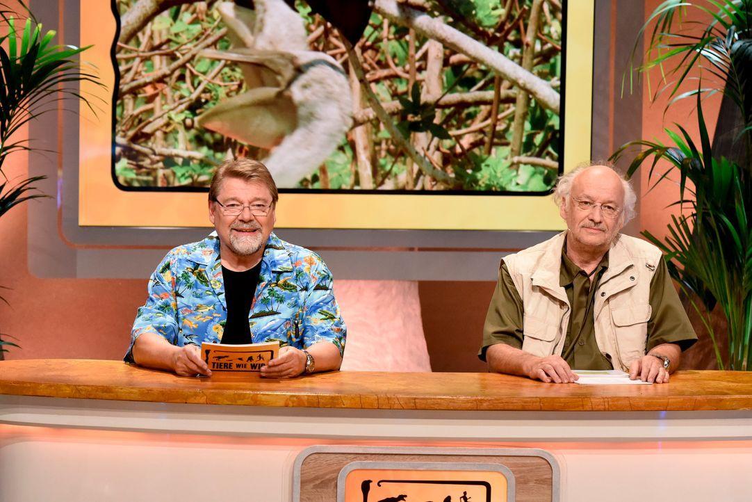 Dr Wolf mit Jürgen von der Lippe3 - Bildquelle: Martin Rottenkolber
