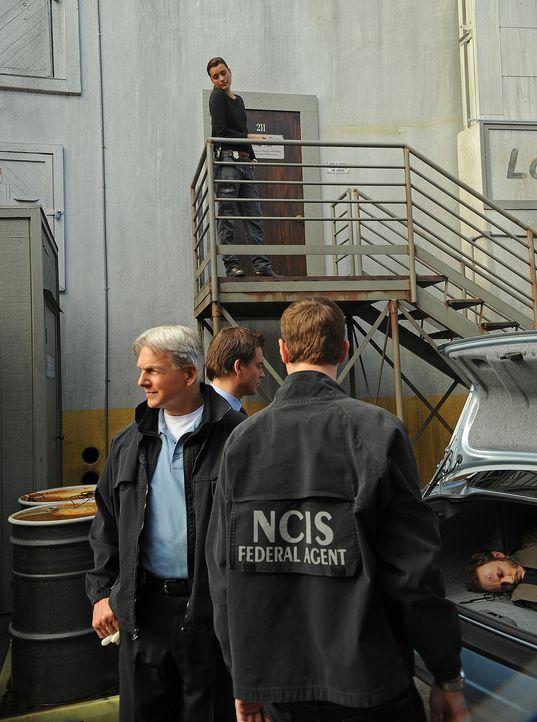 Ein neuer Fall beschäftigt Gibbs (Mark Harmon, l.), McGee (Sean Murray, 2.v.r.), Tony (Michael Weatherly, 2.v.l.) und Ziva (Cote de Pablo, hinten)... - Bildquelle: CBS Television